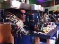 Live_Lobster